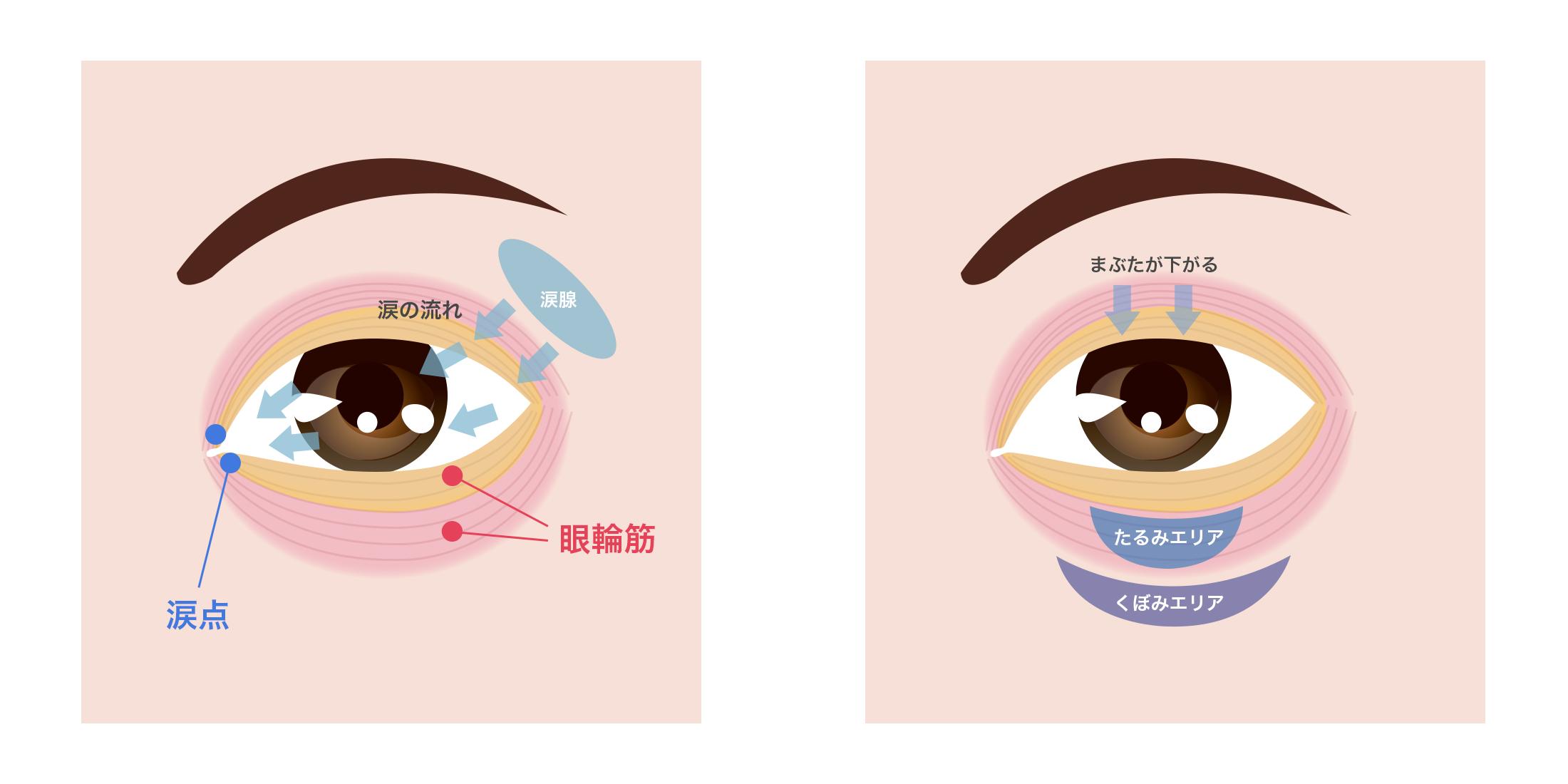 目の周り体操